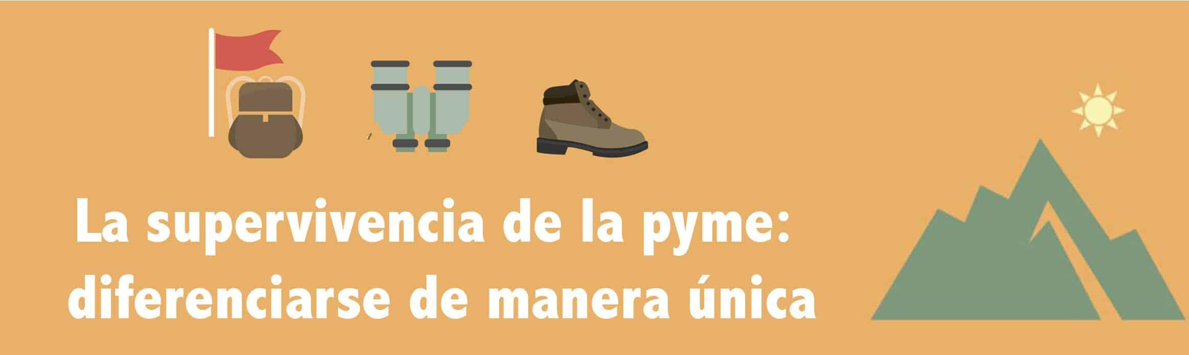diferenciación en pymes