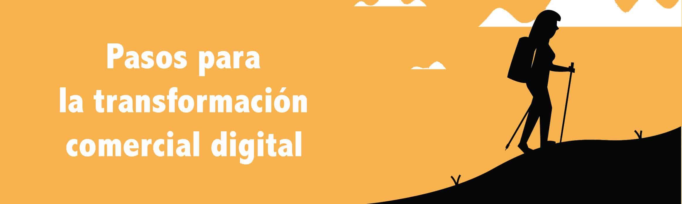transformación digital comercial pyme